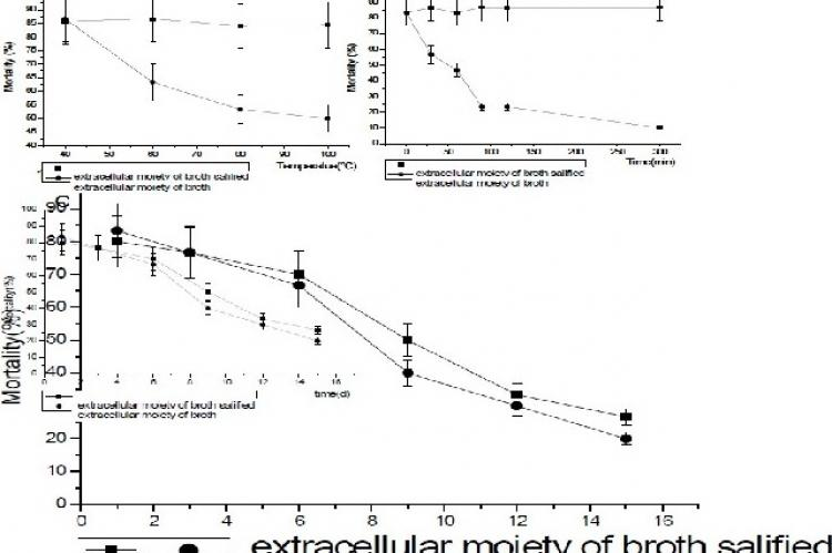 Stability of the extracellular broth against temperature, time and illumination