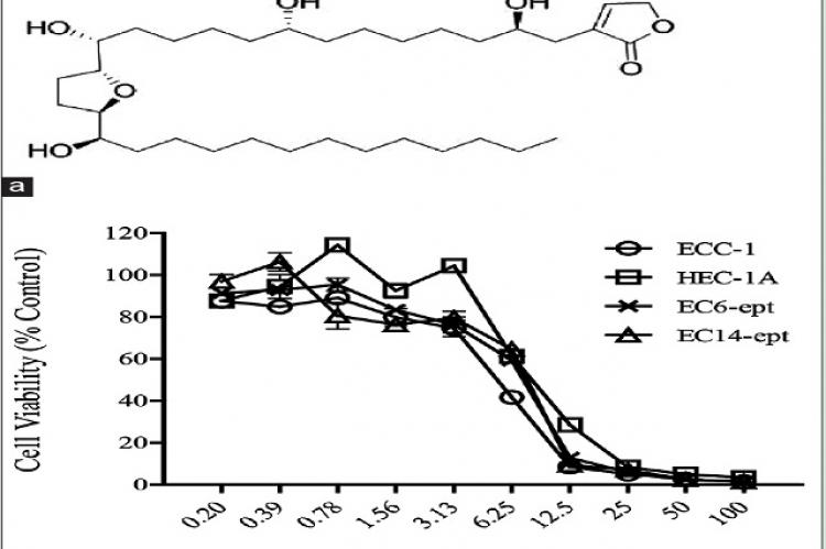 Antiproliferative effects of annonacin on endometrial cancer cells