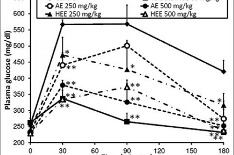 Leaf Extracts of Glyphaea brevis Attenuate High Blood Glucose and Lipids in Diabetic Rats Induced with Streptozotocin